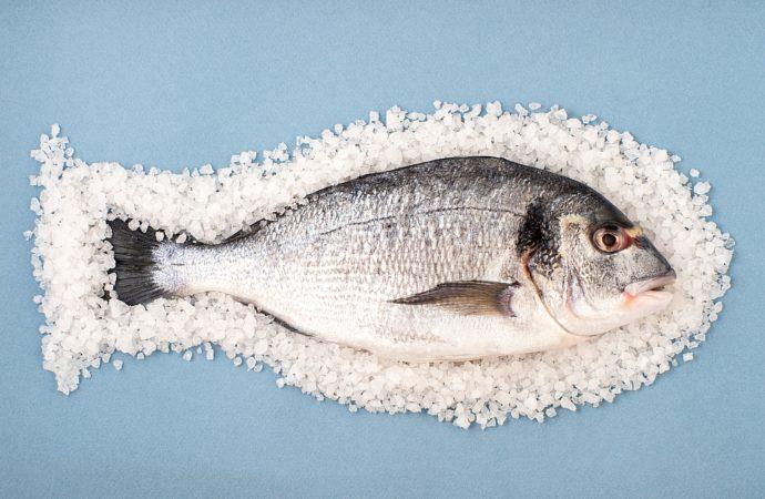 Tłuszcze nasycone w zdrowej diecie cz.1